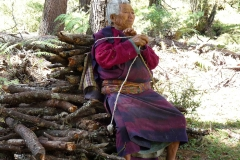 WOMAN HAUL WOOD